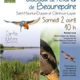 Affiche animation découverte des oiseaux de l'étang de Beaurepaire 2016 © CEN-PC