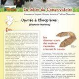 Lettre info Cavités à chiroptères - mars 2014