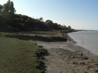 Estuaire de la Charente, Charente-Maritime © CEN-PC