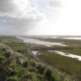 OPP Rives de Gironde n°03 - Janv. 2012 © CEN-PC