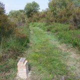 Landes de l'Hôpiteau, sentier d'interprétation © CEN-PC