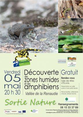 Affiche sortie Fréquence Grenouille © CEN-PC