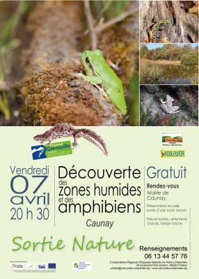 affiche sortie Fréquence Grenouille Caunay © CEN-PC