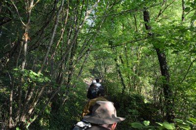 chemin du vallon vers le plateau © cen-pc