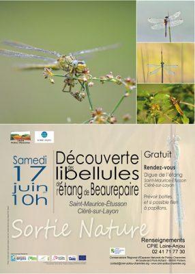 affiche sortie libellules à Beaurepaire (79)