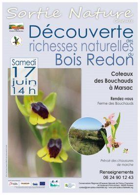 affiche sortie orchidées à Marsac (16)