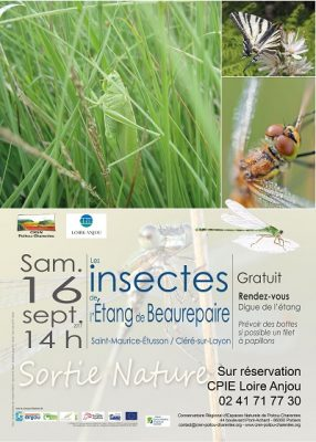 Affiche sortie insectes Beaurepaire (79)
